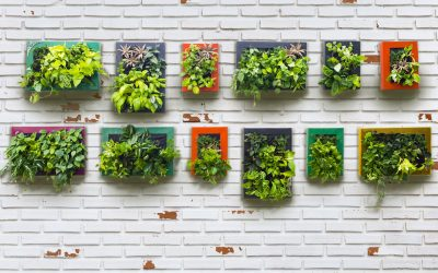 How to Include Trendy Botanicals in your Commercial Interior