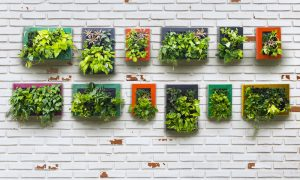 corporate signage How to Include Trendy Botanicals in your Commercial Interior blog image