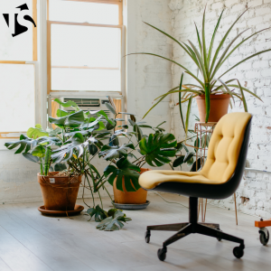 Minimal-Decor-And-Plants-Interior
